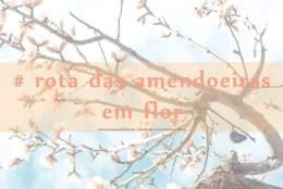 rota das amendoeiras_feat_osmeustrilhos