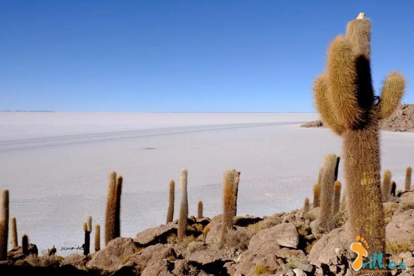 01 - Salar de Uyuni-Bolívia-1