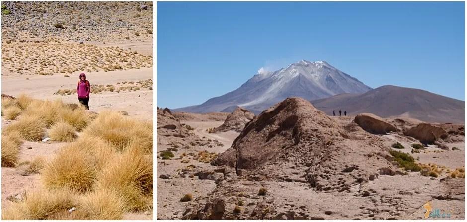 vulcão orellan - bolivia
