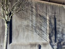 Maria Kidulis - Prison Wall Trees-3