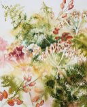 Clare Watson - Autumn Colours