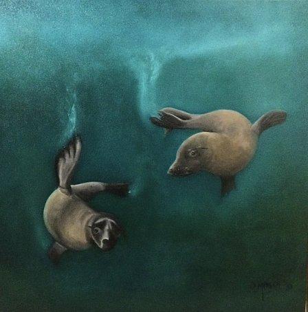 David Moore - Cape Fur Seals playing