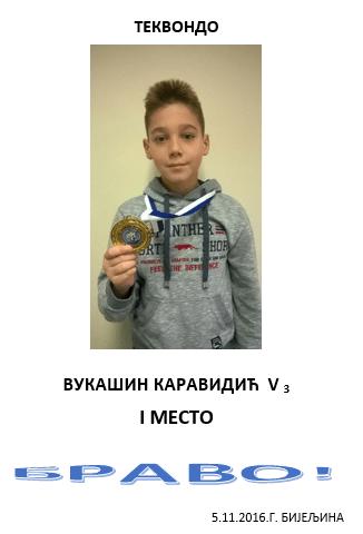 2016-11-10-12_33_54-vukasin-karavidic-53-bijeljina-microsoft-word