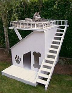 Правильная будка для собаки. Ключевые моменты.
