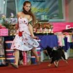 Профессии для собачников: попробуйте себя в чем-то новом