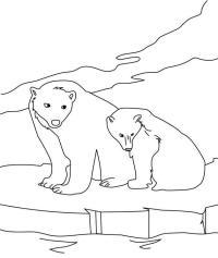Dibujos de osos  OSOPEDIA