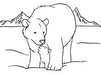 Dibujos de osos polares para colorear - Imagui
