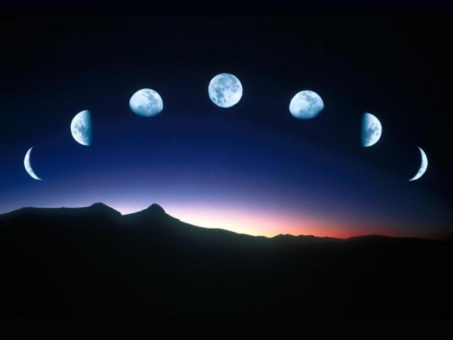 Moon is Earth's Twin