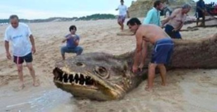 5.-Unknown-Sea-Monster-with-Sharp-Teeth