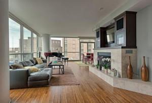 Downtown Chicago Rentals