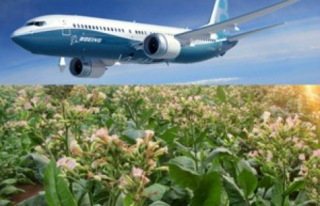 boeing-and-south-african-airways-will-turn-hybrid-tobacco-in-bio-fuel-85273_1
