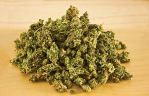 medical-marijuana-dispensary-hawaii-law-sb321-cannabis-medicine-mauitime-jen-russo