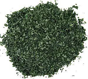 Salvia-10X-Extract