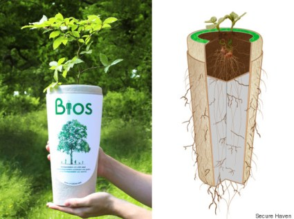 o-BIODEGRADABLE-URN-570