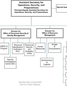 Organization chart also office of operations security and preparedness rh osp
