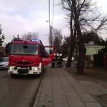 Interwencja - pożar drzewa al.Piłsudskiego zd2