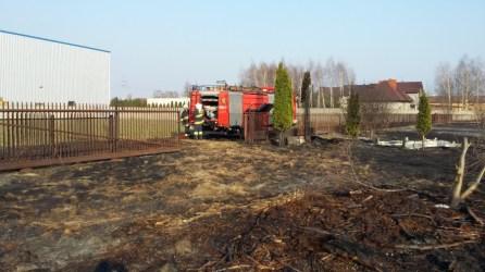 Interwencja pożar trawy regulska zd7
