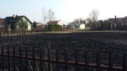 Interwencja pożar trawy regulska zd2