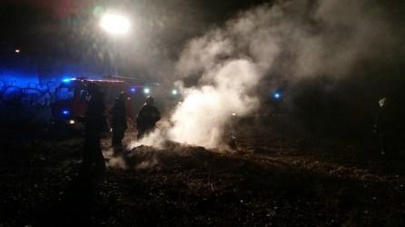 Interwencja pożar galezi zd1