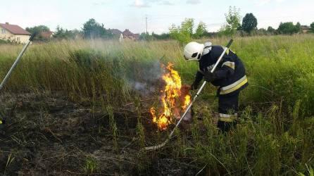 Pożar trawy
