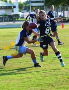 SportsCollageIMGM3753