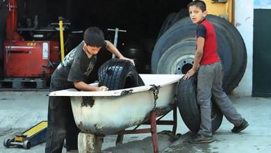 Photo of أطفال بات حلمهم لقمة العيش أطفال عام 2015..