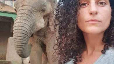 Photo of تمارا قبازرد لـ «أسرتي»:  بإمكان المرأة أن تنجح في أي مجال مادام هناك طموح