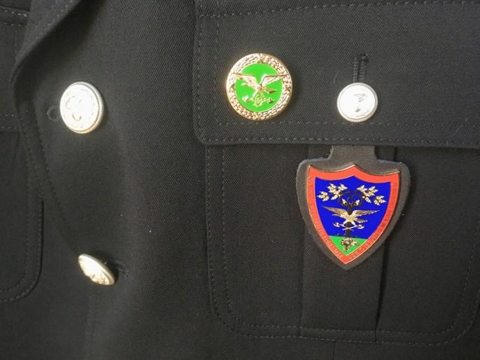 I due distintivo dei Carabinieri Forestali