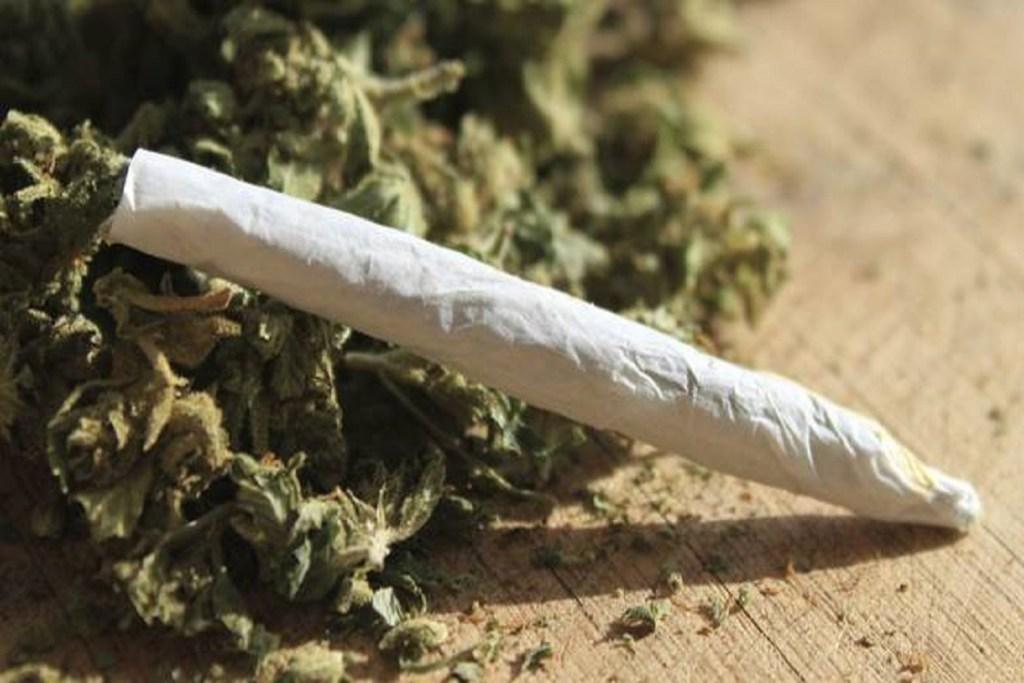 spacciava serra di marijuana via Rosselli cinese bulgaro marijuana 108 grammi di marijuana