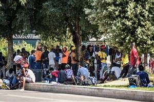 immigrati mezzi dell'AMSA