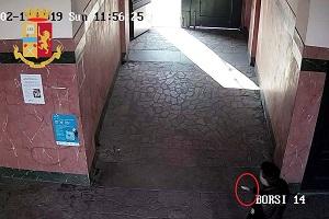 Tentato omicidio in via Borsi arrestato l'autore