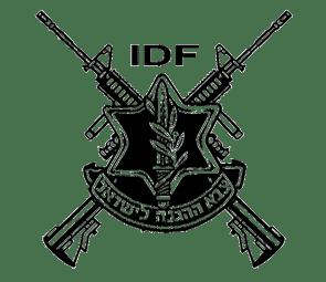 POSIZIONE DI ISRAELE E PALESTINA SUL CONFLITTO: agli