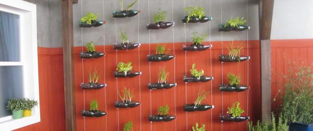 Come riutilizzare le bottiglie di plastica Creando un giardino