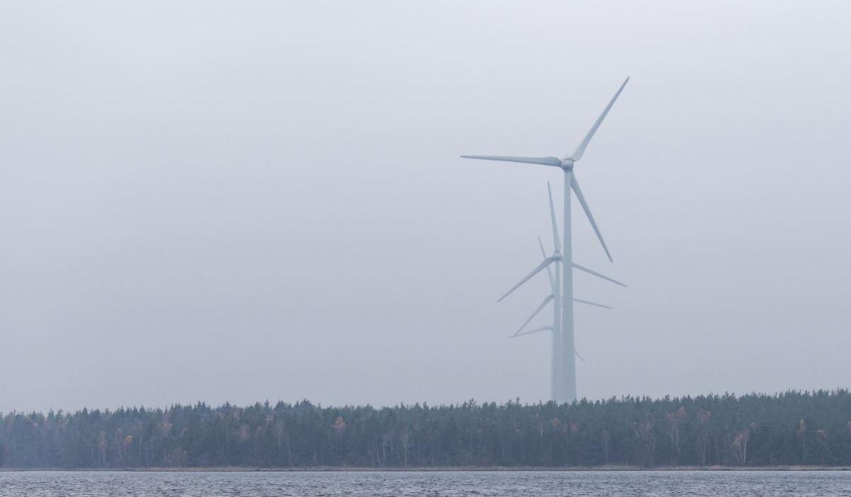 Tuulivoima Tuki