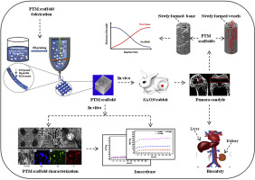 Osteogenic magnesium incorporated into PLGA/TCP porous scaffold by 3D printing for repairing challenging bone defect