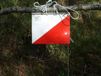 Permalink to: Flere skogtrimposter er nå ute i skogen