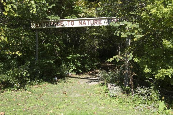 Hayes Arboretum trail head