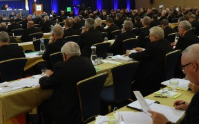 U.S. BISHOPS SPRING MEETING BALTIMORE