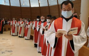 FRANCISCAN CHAPTER OPENING ROME