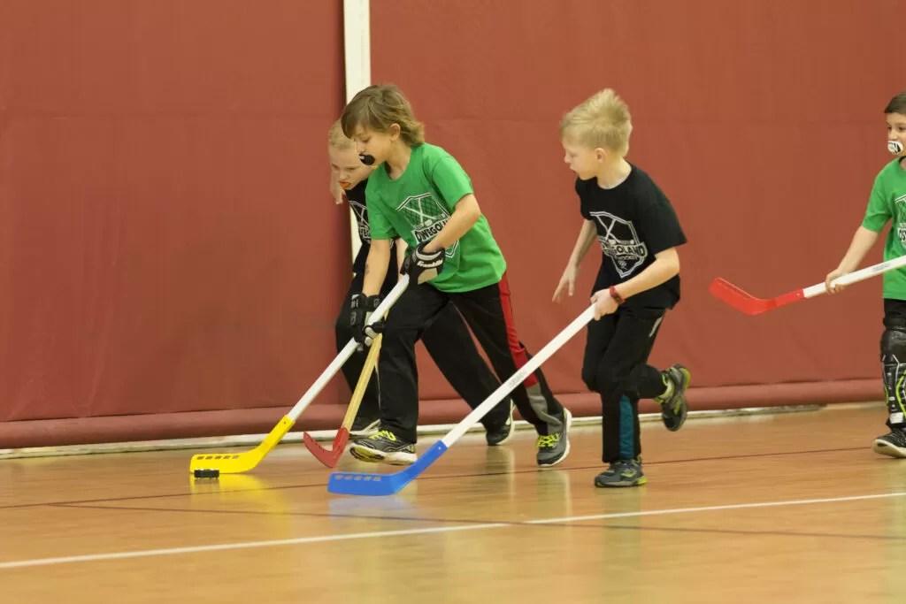Floor Hockey  Oswegoland Park District