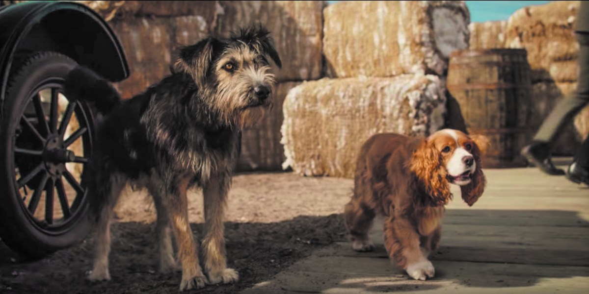 Lady And The Tramp Remake Full Of Nostalgia Cgi Rendered Dogs The Oswegonian