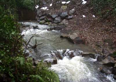 Jan 15, 2004 - Steps/Pools (below the Box Culvert)