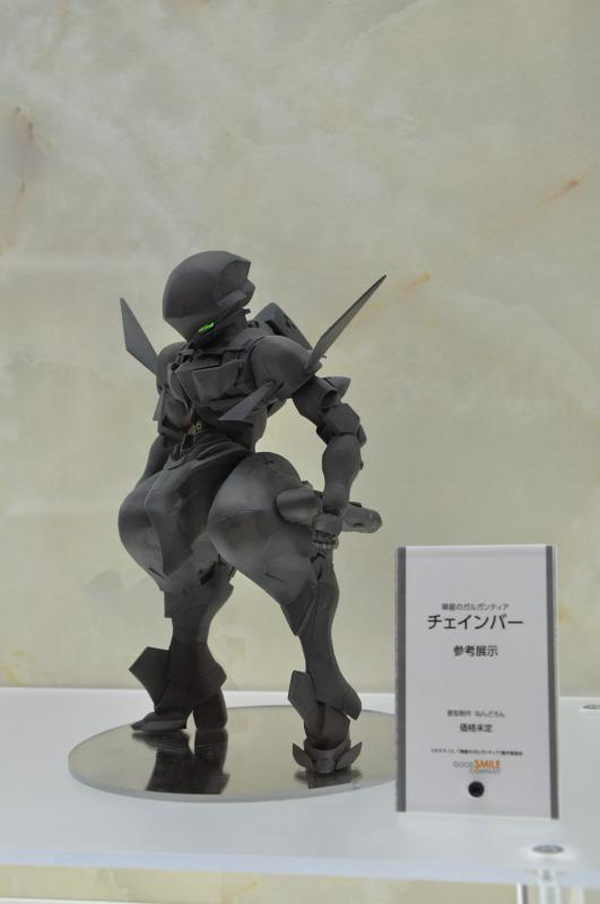 Wonfes 2013 Winter Coverage (10)