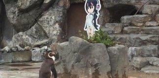 Pinguim Grape-kun falece no zoológicoTobu Zoo_01