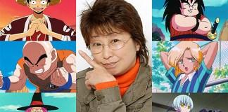 Anime de One Piece pode entrar em hiato