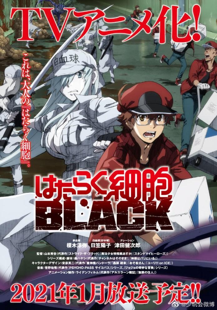 Primeira imagem promocional do anime de Cells at Work! Code Black
