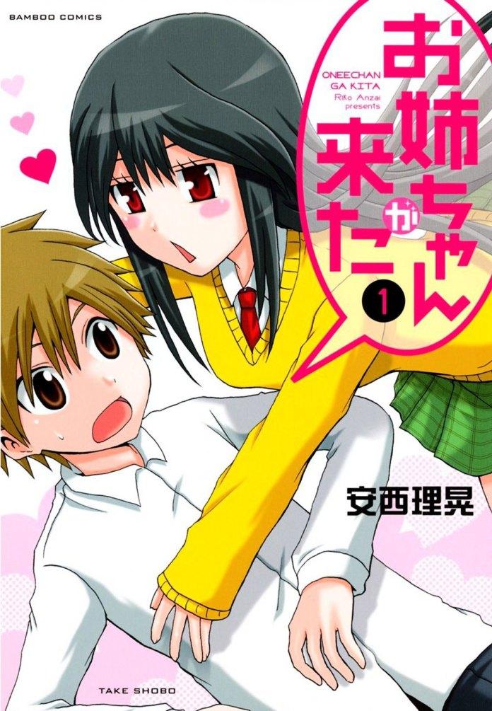 Capa do volume 1 de Oneechan ga Kita (My Big Sister Arrived)