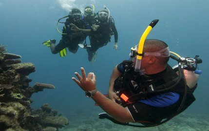 1534249718PADI-discover-scuba-diving-v-and-a-waterfront-ocean-experiences-1