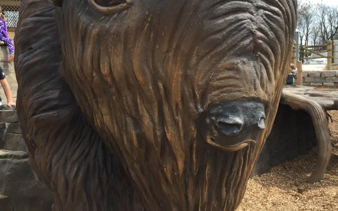 Chicagoland's newest nature playground: Bison's Bluff in Schaumburg