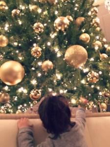 Enjoying holiday tea with the family at Drury Lane